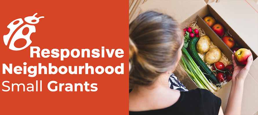 Responsive Neighbourhood Small Grants » Mount Pleasant ...